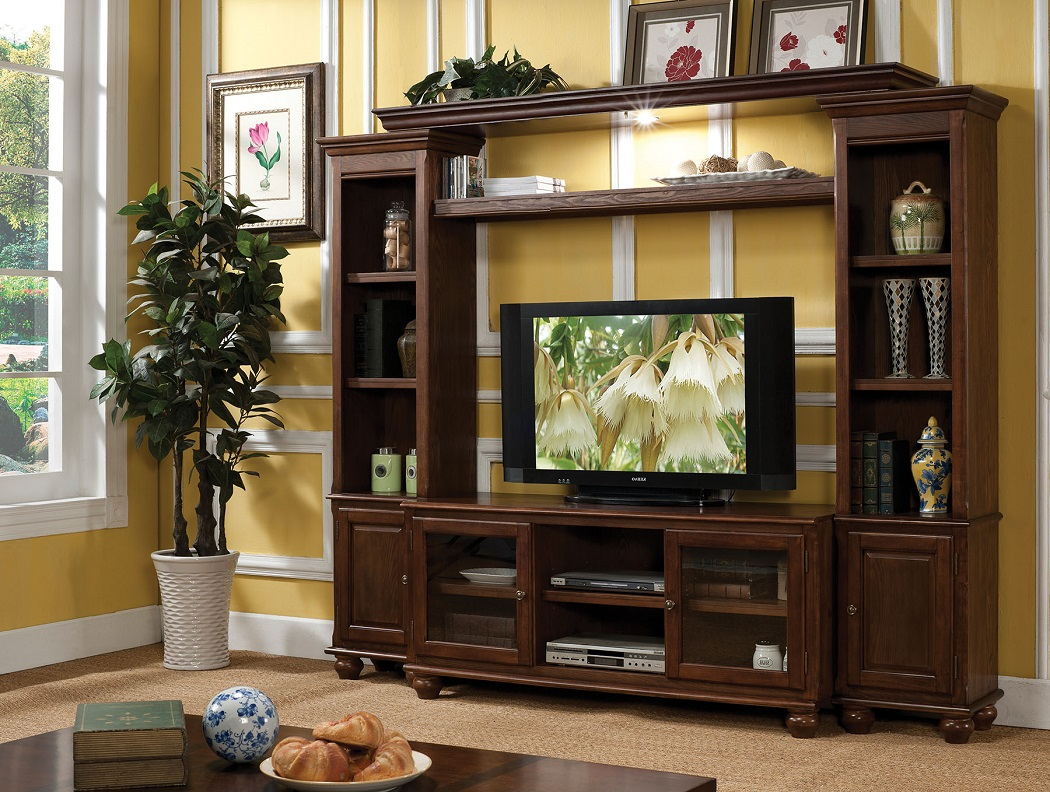Dita Collection 91105 Acme Entertainment Wall Unit