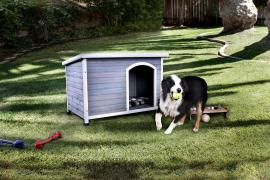 Cando Large Pet House by Furniture Of America CM-PH316-L